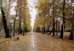 پاییز و طبیعت زیبایش در رشت